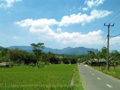 Kawasan Gunung Picung